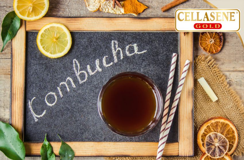 Los beneficios de la tan popular kombucha